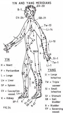 yin-yang-meridians