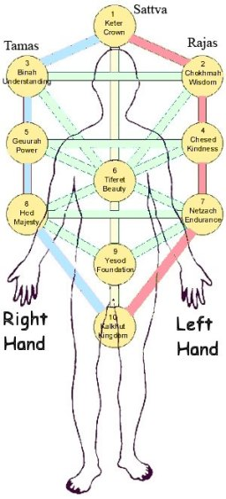 Chakras in the Tree of Life
