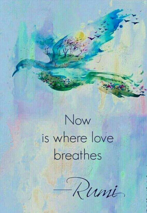 Now-is-where-love-breathes-Rumi